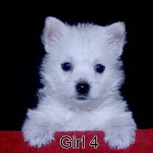 9-8-21 Tinsel Girl 4.JPG