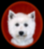 Soraya Portrait Web.jpg
