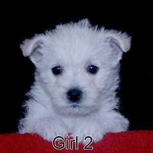 6-29-21 Chantilly Girl 2.JPG