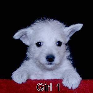 2-17-21 Bow Girl 1.JPG