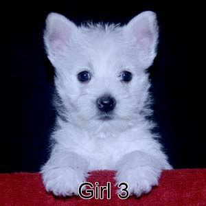 9-23-21 Tabitha Girl 3.JPG