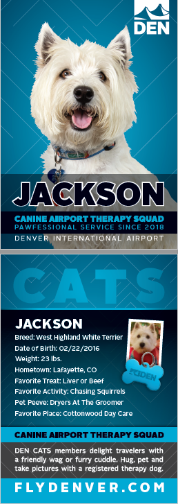 Jackson DIA Therapy Dog.png