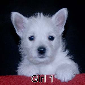 6-29-21 Chantilly Girl 1.JPG