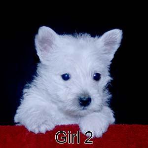 6-4-21 Sapphire Girl 2.JPG