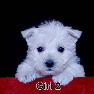 3-10-20 Leia Girl 2.JPG