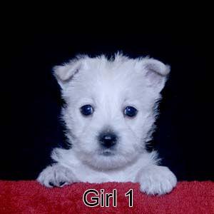 9-1-20 Samantha Girl 1.JPG