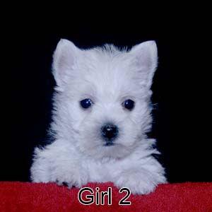 6-23-20 Jasmine Girl 2.JPG