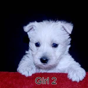 5-18-20 Holly Girl 2.JPG