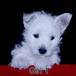 4-22-21 Cashmere Girl 1.JPG