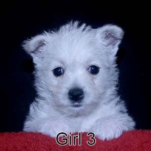 6-29-21 Chantilly Girl 3.JPG