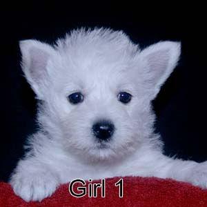 7-7-21 Luna Girl 1.JPG