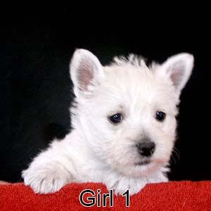 1-19-21 Luna Girl 1.JPG