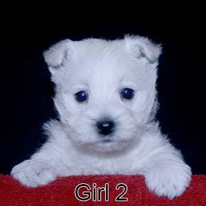 3-9-21 Glitter Girl 2.JPG