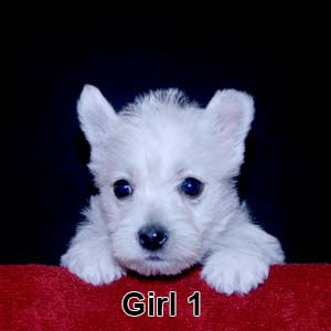 3-10-20 Leia Girl 1.JPG
