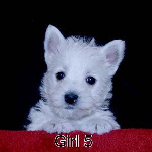 1-19-21 Luna Girl 5.JPG