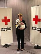 Westie Whispers Lucca is Red Cross Hometown Hero
