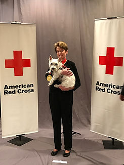 Westie Whispers Lucca is Red Cross Hometown Hero