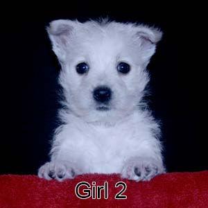 9-23-21 Tabitha Girl 2.JPG