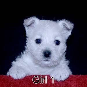 3-9-21 Glitter Girl 1.JPG