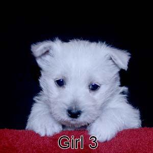 1-19-21 Luna Girl 3.JPG