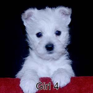 9-23-21 Tabitha Girl 4.JPG