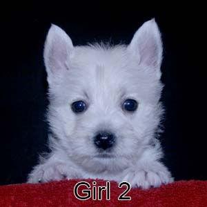 7-7-21 Jasmine Girl 2.JPG