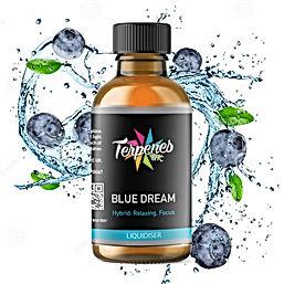 blue dream liquidiser new2.jpg