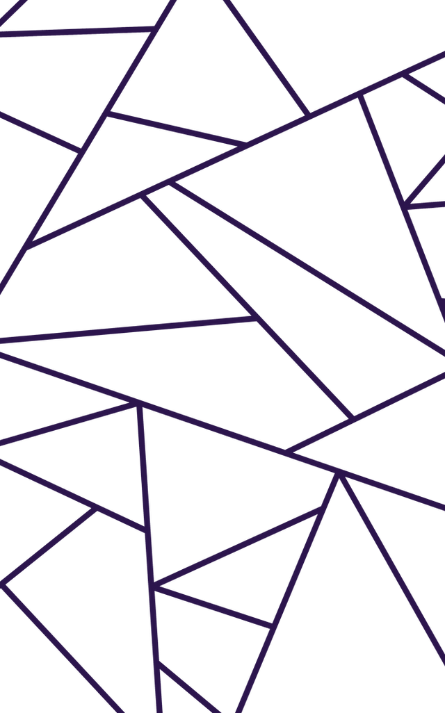OUTLINE GEO.png
