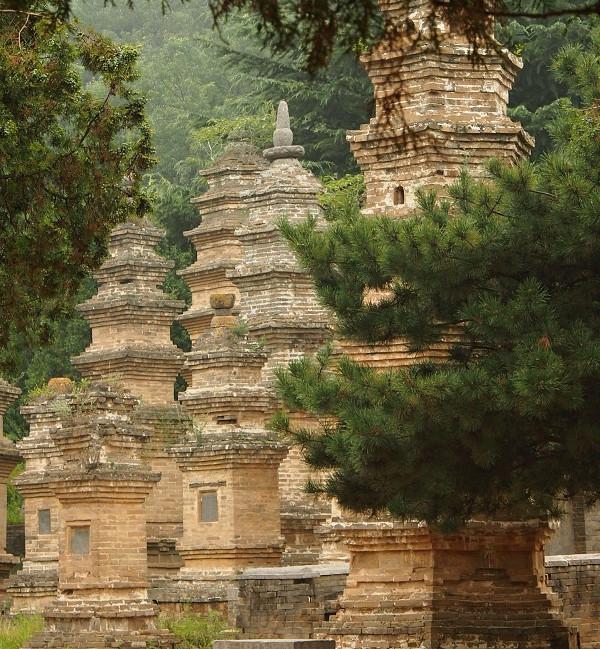Les pagod Shaolin.jpg
