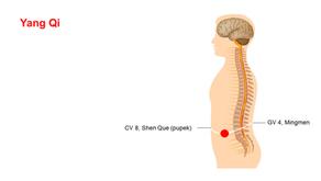 Cvičit qigong lze i ve spánku