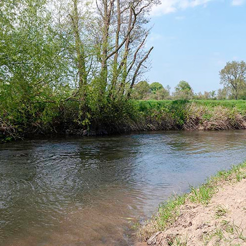 Pont Dafydd beat - Rhyl and St Asaph Angling Association