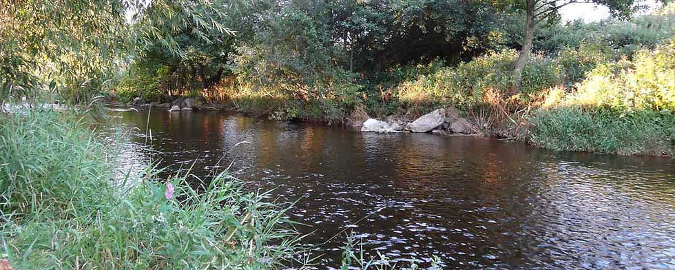 A photo of the Gypsy Lane beat of the River Elwy near Rhyl and St Asaph North Wales. Controlled by Rhyl an St Asaph Angling Association, the river Elwy offers fishing for wild brown trout, sea trout and salmon.