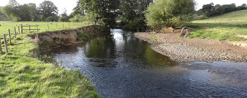A photo of the Ysgubor y Coed beat of the River Clwyd at St Asaph near Rhyl North Wales. Controlled by Rhyl an St Asaph Angling Association, the river Clwyd offers fishing for wild brown trout, sea trout and salmon.