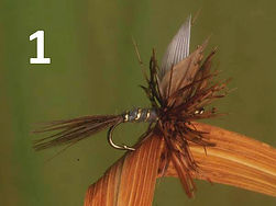 march-brown-dryfly - first nature.jpg