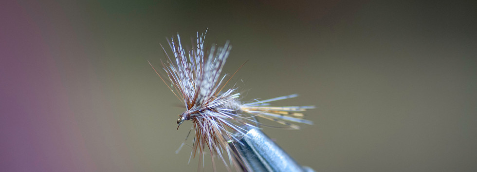 Wally's March Brown dry.jpg