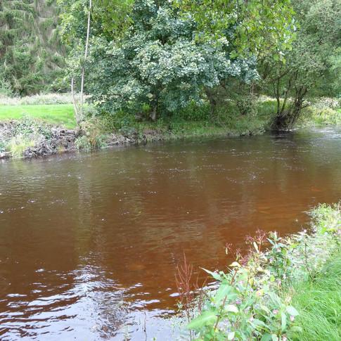 Pont y Ddol Beat, River Elwy