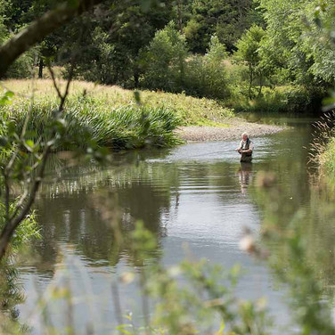 Rhyl St Asaph Angling - Wern Ddu beat on the river Clwyd, North Wales