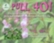 Pull 40.jpg