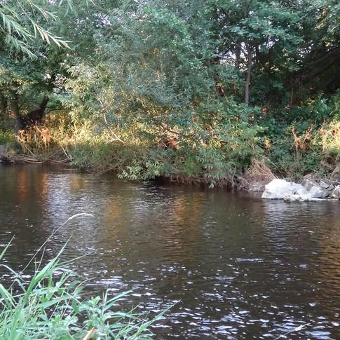 Gypsy Lane beat - River Elwy
