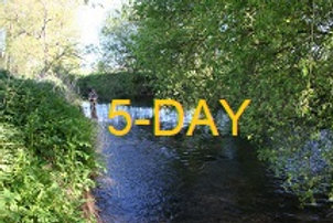 Game Fishing 5-Day Visitor Permit for Selected River Beats
