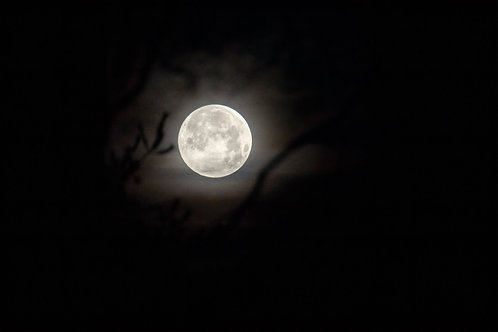 pastel full moon