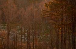 _ARK9597 riprap landscape_edited