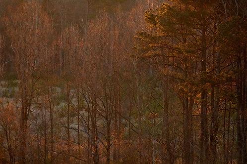 riprap golden hour landscape