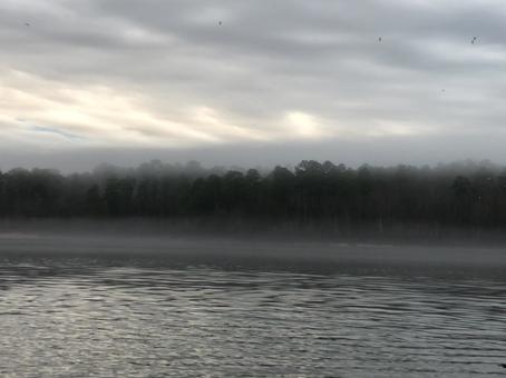 Morning Natural Minute 01/15/2020