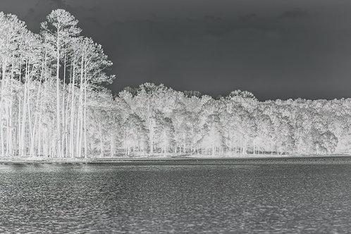 Vista Point lakescape