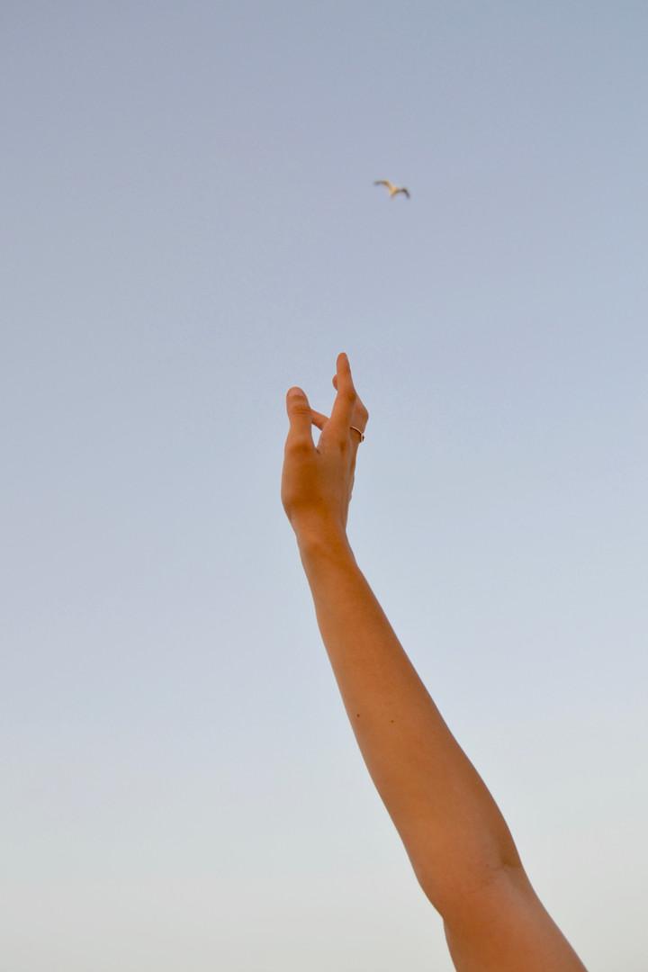 Omer's hand, 2019