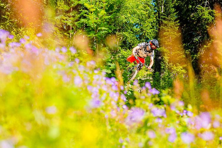 Mountainbike. Åre året runt.