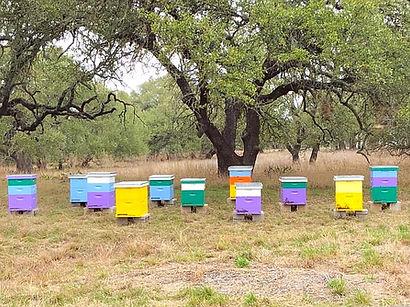 honey farm_edited.jpg