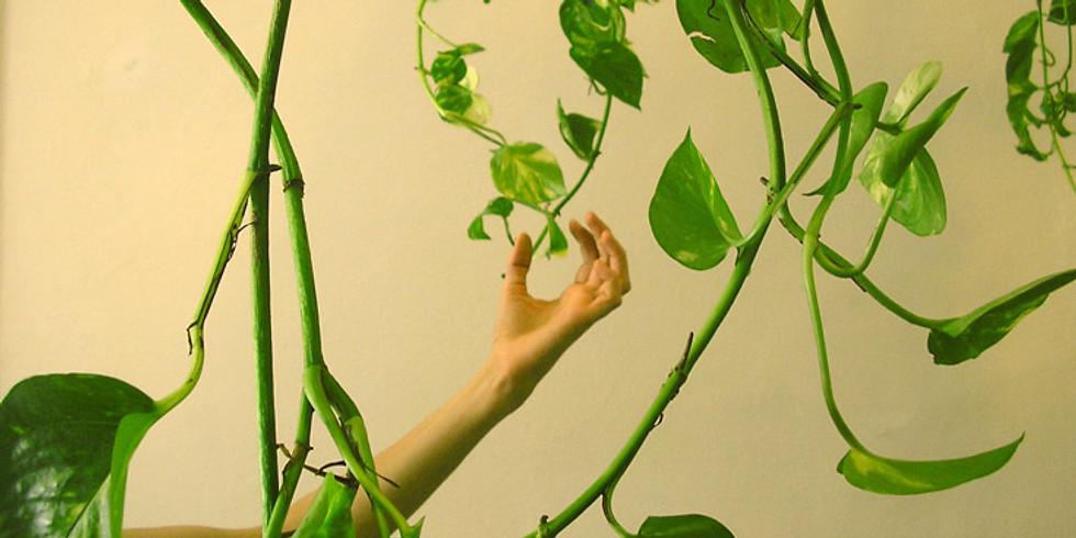 Visio-conférence Le végétal dans l'art