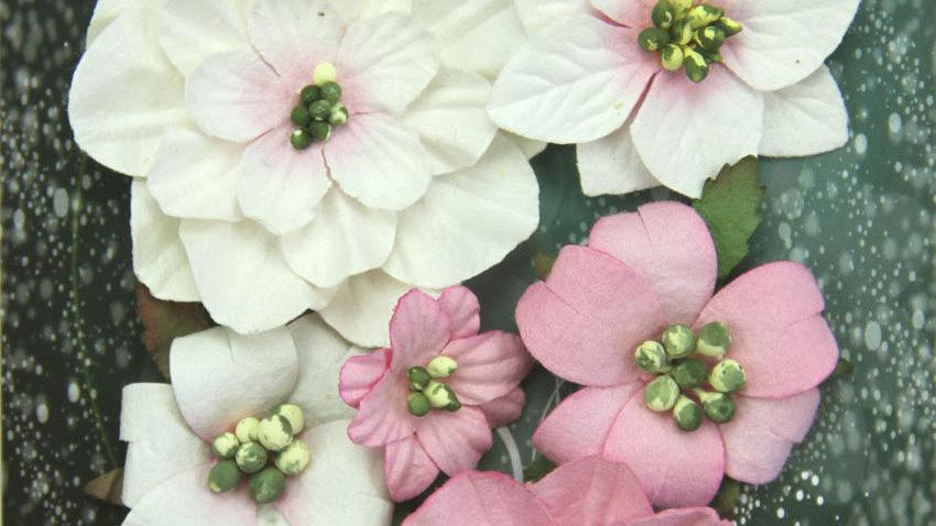 Green Tara Fantasy Blooms Rose